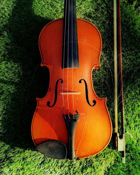 Classic #Piano #Concert #concert_photography #classicmusic #mozart #green #photography #beautiful #string #Austria #instrument Music Musical Instrument String Instrument Arts Culture And Entertainment Musical Instrument String Guitar Day Close-up Classical Music Outdoors Violin