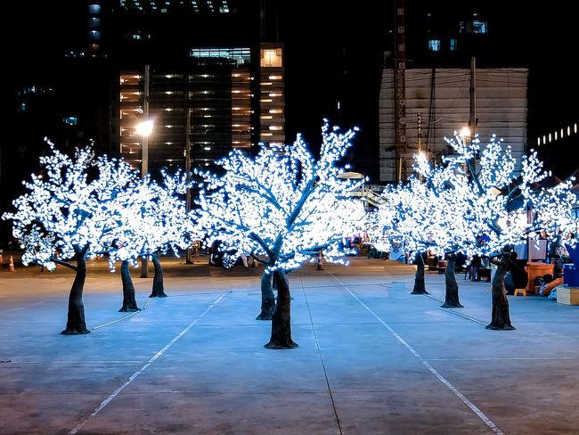 Bright Lights Illuminated Light And Dark Light And Shadow Mood Neon Neon Lights Neon Market Neon Trees Night Outdoors Travel Destinations Tree White Lights