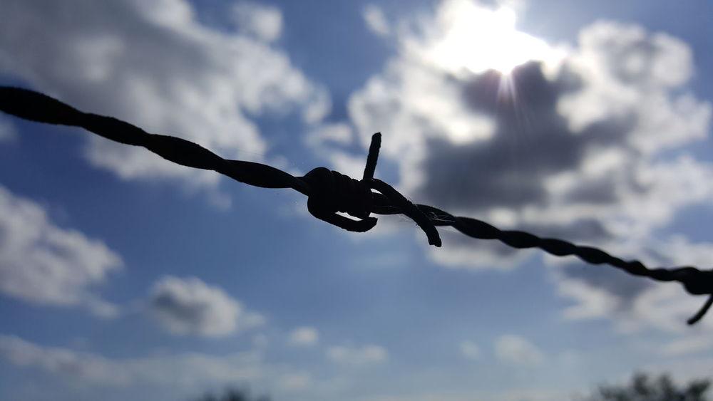 Enemy Feind Hoffnung Hope Distance Schutz Safety People Sun Cruelty