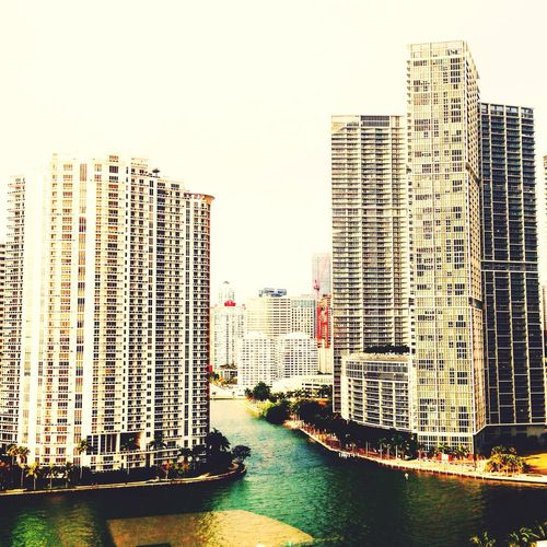 Downtown Miami First Eyeem Photo