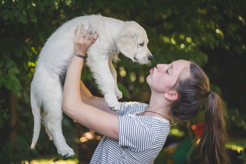 Mammal One Animal Pets Domestic Domestic Animals Canine Dog Real People Leisure Activity Friendship Childhood One Person Vertebrate Child Day Positive Emotion Teenager Profile View Pet Owner A New Beginning