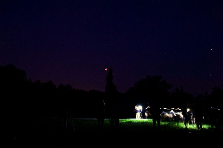 Silhouette people standing on illuminated field against sky at night