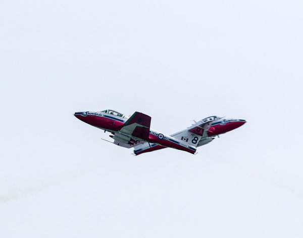 Aerobatics Aerospace Industry Air Force Air Vehicle Airplane Army Clear Sky Copy Space Day Fighter Plane Flying Low Angle View Mid-air Military Mode Of Transportation Motion Nature No People on the move Plane Sky Snowbirds Transportation