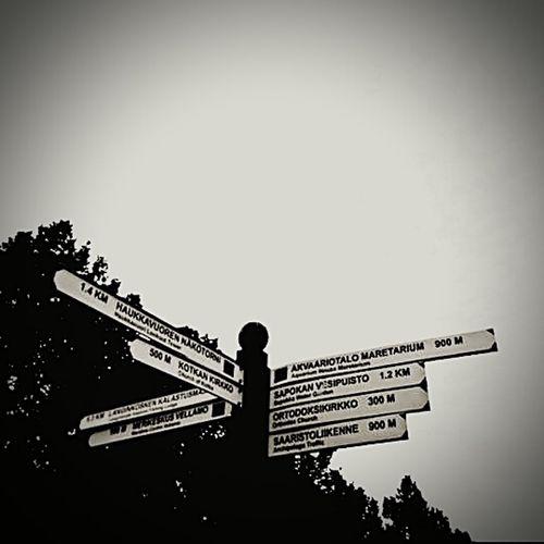 Witch Way????