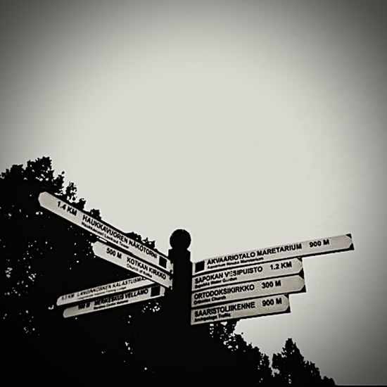 Witch Way???? Signs Sign Choose One Hello World Distance B&w Blackandwhite Photography