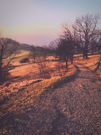 #nature #walking Sky Tranquility Sunset Tranquil Scene Landscape First Eyeem Photo