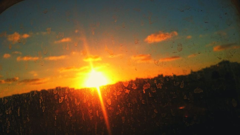 Sun Sunset No People Sun Nature Sky Outdoors Close-up Tree Day Window Train Window View Window Train Travel Destinations