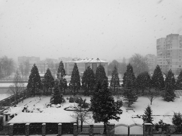 Storm is coming... - Snowing Winter Cold Temperature Monochromatic Monochrome Black&white Black And White Photography Black & White Black And White Blackandwhite черно-белое фото Leicap9 Leica Lens Leica Photography Leica P9 фотография Leica HuaweiP9 Huawei P9 Leica Urban Skyline City Sky Snow Snow ❄ Snowflakes