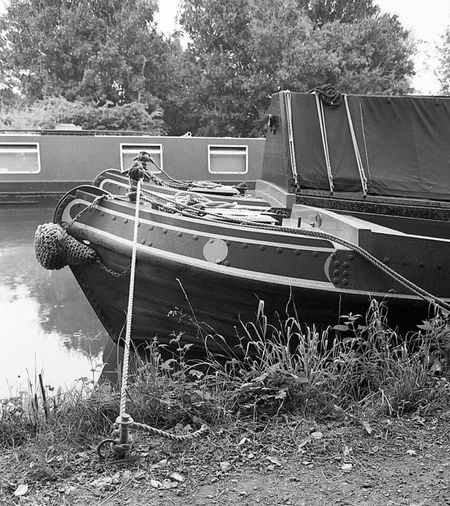 35mm Film Canon AE - 1 Program  Film Photography Black & White