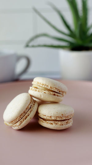 Stack of three fresh french pastel colorful macarons on plate served on table