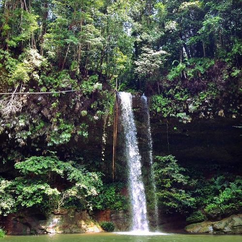 Latak Waterfall. Only a 20 min trek through the jungle for this popular spot. It was beautiful but crowded so we pushed on...