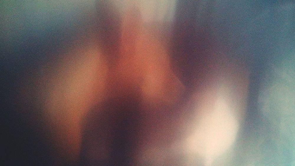 Full Frame Dogs Perros❤ Perros  Niebla Fog Fog_collection Experimental Experiment Experimental Photography Desenfocado Desenfoque Selectivo Desenfoque Desenfocados EyeEm Best Shots Eye4photography  EyeEm Gallery EyeEmBestPics