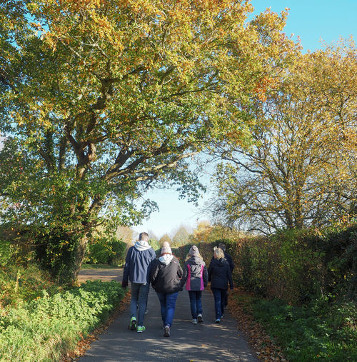 Autumn walks Autumn Mood Plant Group Of People Tree Real People Walking Rear View Women Men Lifestyles Full Length Adult Nature Growth Leisure Activity Direction Togetherness The Way Forward People Day Autumn Outdoors Change