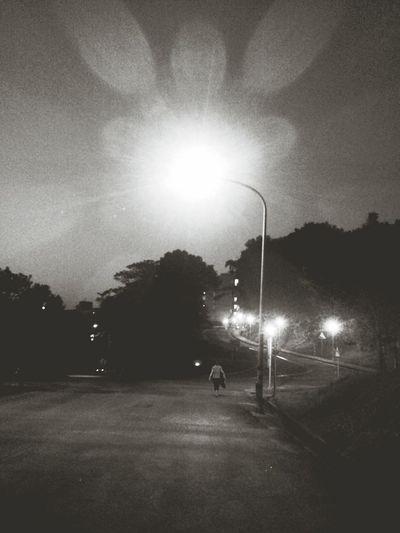 On The Road Street Lights
