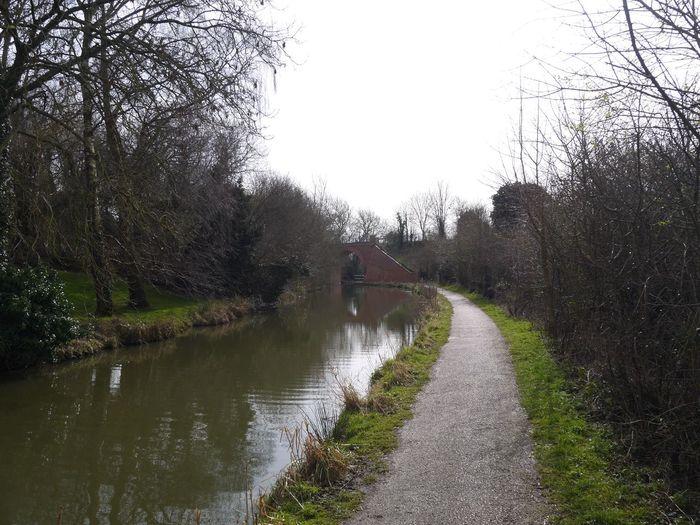 Swindon Canal Bridge Countryside