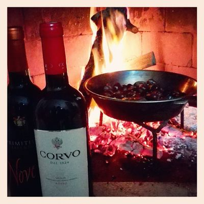 Instabest Instacool Autumn Wine friends red fire