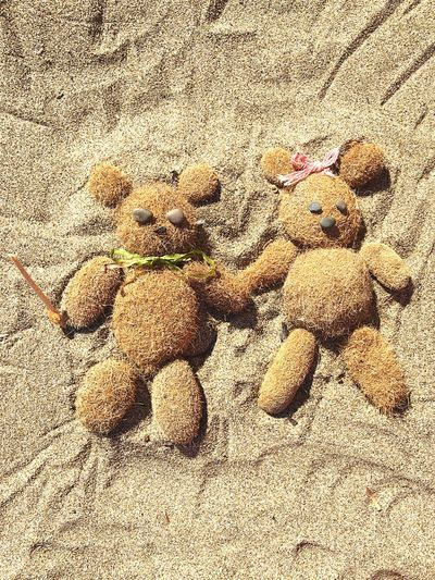 Love Lovely Background Backgrounds Summertime Shell Sand & Sea Holidays Funny Fun Sand Summer Animal Little Bear Bear Peluches Beach Wallpaper Lifestyles