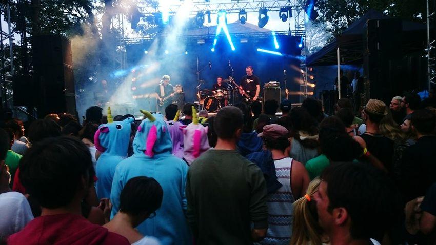 Concert Photography Licorne Festival