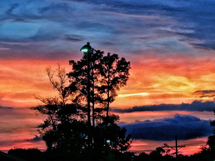 Sunsetting in Meadville, MS... Colour Of Life Orange Clouds Clouds And Sky Sky Sky And Clouds Firey Sunset Firey Sky Sunset Sillouette Of Trees Sunset Silhouettes Nature