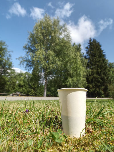 Close-up of tea served on field against trees