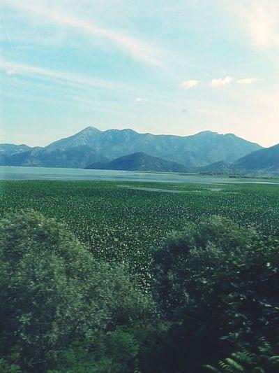 Nature_collection Mountains Lake Lakeside