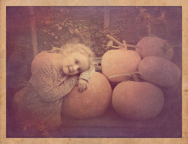 Kürbisernte Vintage Pumpkins Auto Post Production Filter Transfer Print Toy No People High Angle View Representation Day