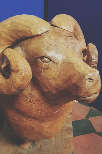 Close-up St Martin's Church RAM Lamb Symbolic  Wood Carving