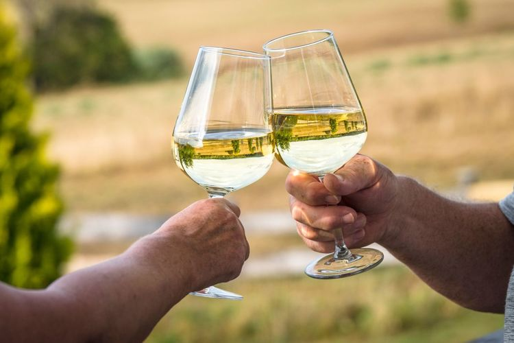 Cheers with white wine reflecting beautiful nature Summer Wine Glass Romantic Love View Vacation Outdoors Wedding Celebrating Celebration Good Times Party White Wine Reflection Nature Summer Dating Couple Nature Wine Alcohol Cheers Drink