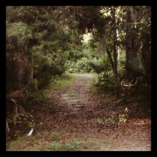 Path Longandwindyroad Endofrainbow Walk