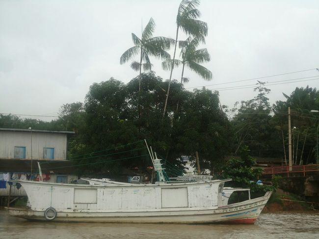 Macapá Amapá Macapá-Brazil River Boat