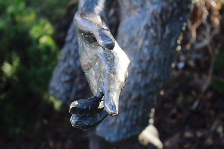 Take my hand Northern Ireland Creativity Still Life Sunlight Art And Craft Art is Everywhere Photooftheday Outdoors Tourism Taking Photos EyeEmNewHere Narnia  Statue Hand Photography EyeEm Selects Focus On Foreground Day Outdoors Close-up The Creative - 2018 EyeEm Awards