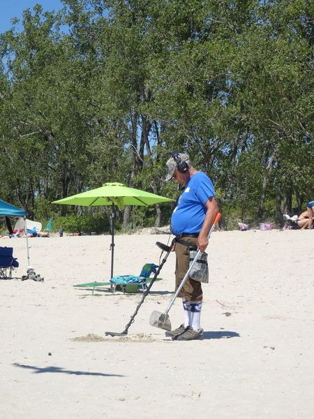 Looking for a treasure at Sandbanks Adult Adults Only Day Full Length Leisure Activity Looking For Gold Men Nature One Man Only One Person Only Men Ontario, Canada Outdoors People Real People Sandbanks Beach Sunlight Tree Seagull Reflexions