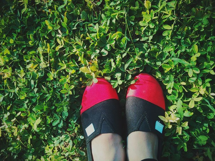 Red&black Shoes Lovely Glass Taking Photos VSCO That's Me Photobyme 📷