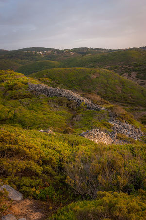 Portugal Sintra Beauty In Nature Goldenhorn Grass Landscape Nature No People Outdoors Softlight  Sunrise Valley