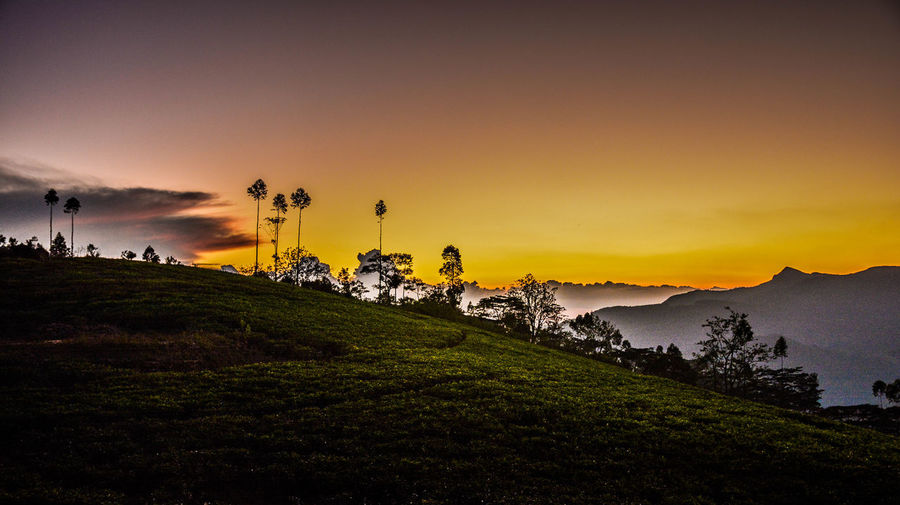 Sunset over knuckles 18-140mm Architecture Beauty In Nature Building Exterior Built Structure D7100 Day Grass Knuckles Range Landscape Mountain Nature Nikon No People Orange Color Outdoors Scenics Sky Sri Lanka Sunset Tranquil Scene Tranquility Tree Water