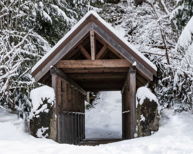 #beautifulbc #bridgeotbrandywine #supernaturalBC Beauty In Nature Birdhouse Cold Temperature Cottage Day Forest House Log Cabin Nature No People Outdoors Scenics Snow Snowing Tree Weather Winter Wood - Material