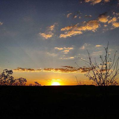 Sunset Fimdetarde Sky Clouds Tree Skyblue Landscape Sunsetlovers Sunsetporn Instasunsets Pordosol Igersminasgerais Ig_minasgerais Igers_minasgerais Conhecaminas Visiteminasgerais Exploreminas Brasil_sunset Conquistamg Minasgerais SamsungGalaxyA5 Samsungmobilecamera Partiupelomundo