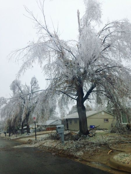 Winter Winter Storm Belowzero Freezing Kansas