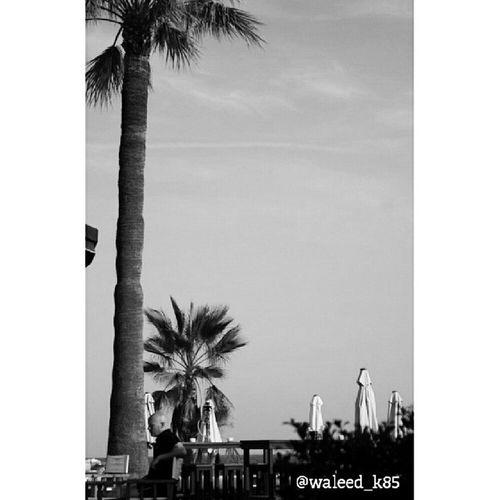 at OceanClub OceanClubMarbella enjoying a Drink . Near the Beach at PuertoBanus Puerto_banus. marbella malaga andalusía spain españa. Taken by my SonyAlpha dslr a200. Taken in my 2012 summer trip ماربيا اسبانيا بحر شاطئ