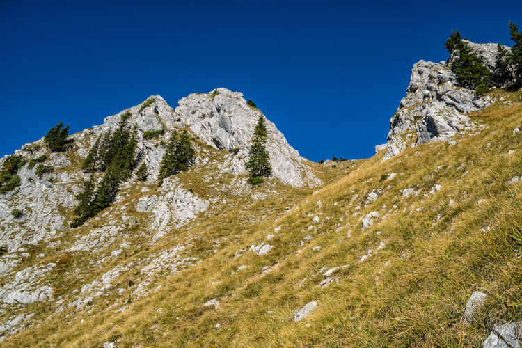 View to Blachenspitze Mountain Peak Outdoors Rock Formation Sunlight Mountain Range Solid Rock - Object Low Angle View Non-urban Scene Plant No People Rock Blue Day Tranquility Nature Tranquil Scene Scenics - Nature Mountain Clear Sky Beauty In Nature Sky Alps Austria Tyrol Idyllic Formation