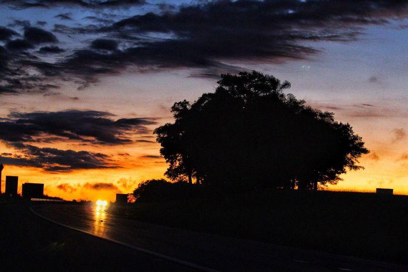 70-200mm Tripping Sunrise Amanhecer Estrada Viajando Trip Sky Tree Nature Road