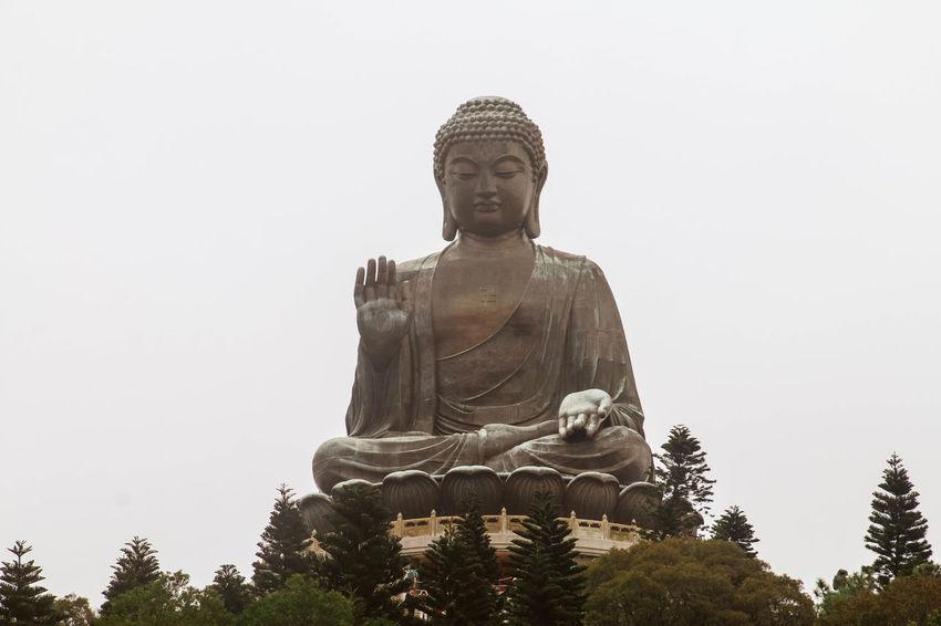 Big Buddha (Tian Tan Buddha) Big Buddha Buddha Buddhism Buddhist Clear Sky Culture Giant Hong Kong Lantau Monastery Ngongping360 Po Lin Statue Tian Tan Buddha (Giant Buddha) 天壇大佛 Tree