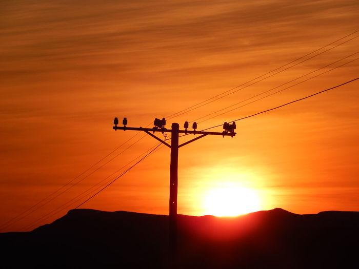 EyeEm Sunsets Horizon Over Land Mountain Skyline Skyporn Sun Sunset_collection Telephone Pole