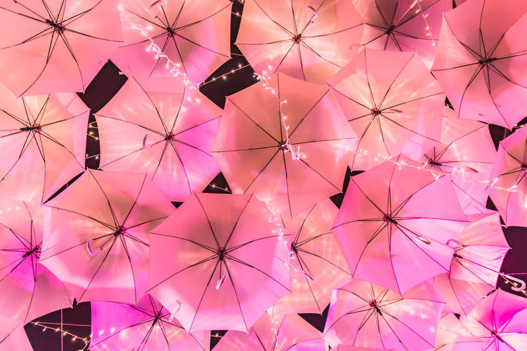 Art And Craft Backgrounds Ceiling Creativity Day Decoration Design Directly Below Full Frame Indoors  Large Group Of Objects Low Angle View No People Pattern Pink Color Protection Purple Security Still Life Umbrella