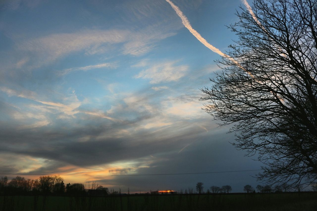 tree, sky, nature, beauty in nature, tranquil scene, scenics, no people, bare tree, tranquility, silhouette, cloud - sky, sunset, outdoors, day, vapor trail