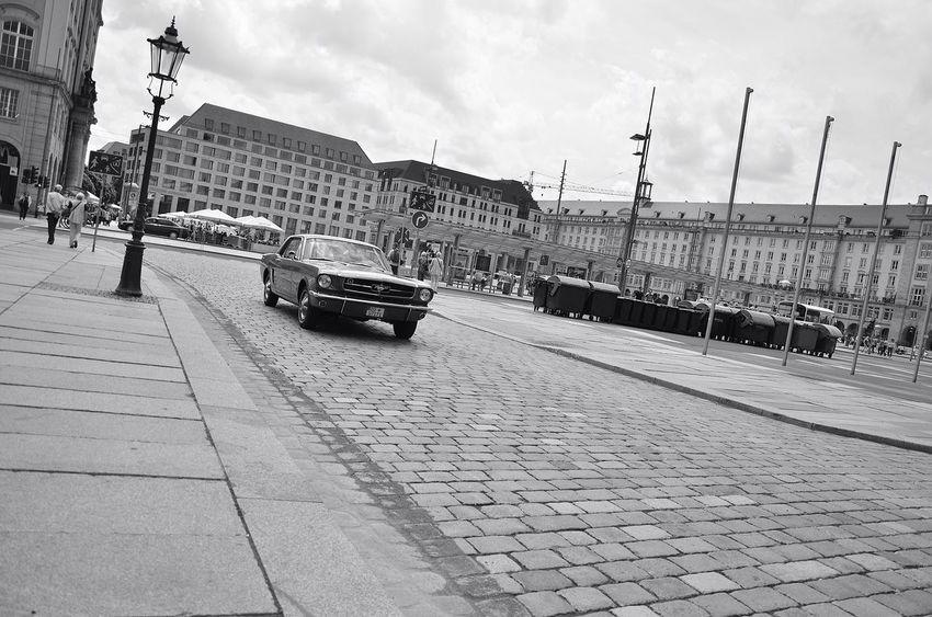 Ford Mustang Schwarz & Weiß My My Noir Life