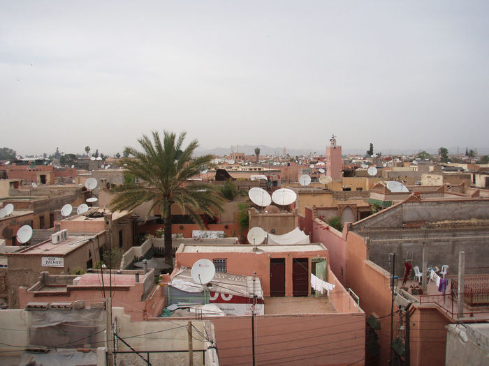 Africa City Landscape Marrakech Marrakesh Morocco Palm Tree Residential  Roof Roofs Rooftop Rooftops Satellite Dishes Tree Urban