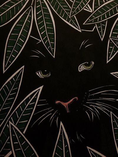 Dark Creativity Black Background Green Eyes Panther Jungle Leaves Color Coloring Book