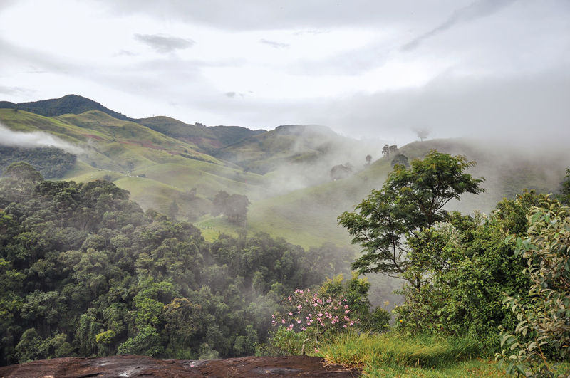 Overview of forest and hills shrouded by mist and clouds near the town of joanopolis. brazil