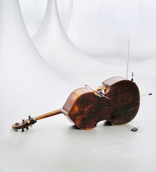 Close-up of violin against white background